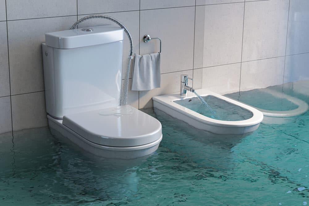 Toilet Problems Tom's Plumbing & Drain Services